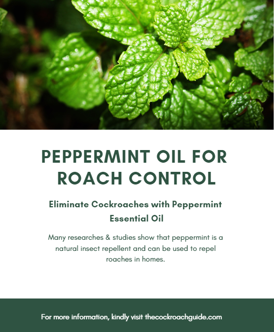 Does peppermint oil repel cockroaches