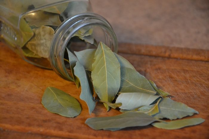 Keep brown cockroaches away with bay leaves