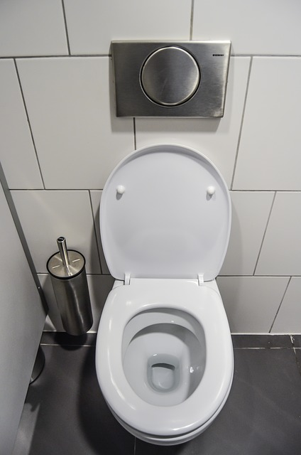 get rid of cockroaches from toilet