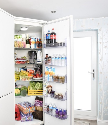 how to get rid of cockroaches in fridge