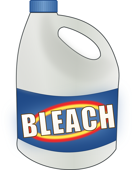 bleach for american cockroaches
